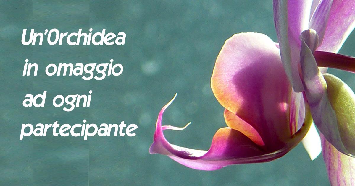 22-12-2019 Corso sulla cura e rifioritura della orchidea Phalaenopsis